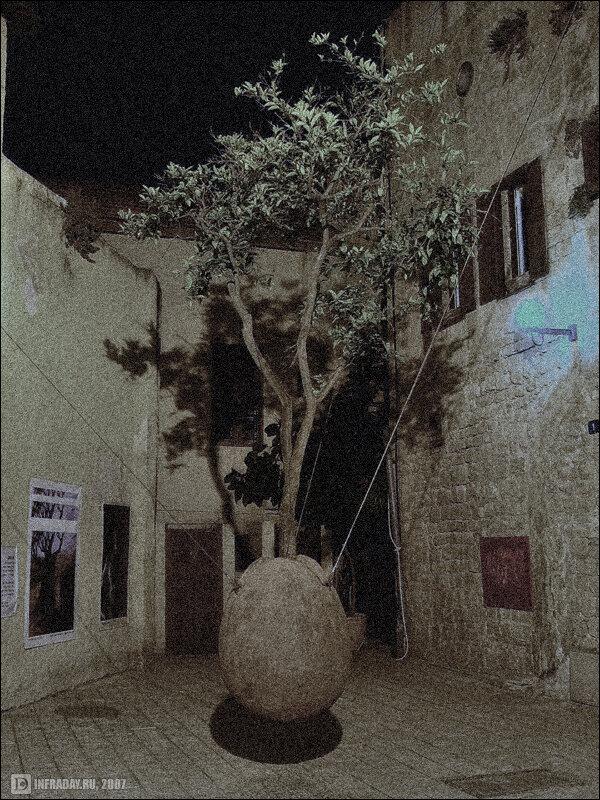 Ночной Яффо, фотография ночного Яффо