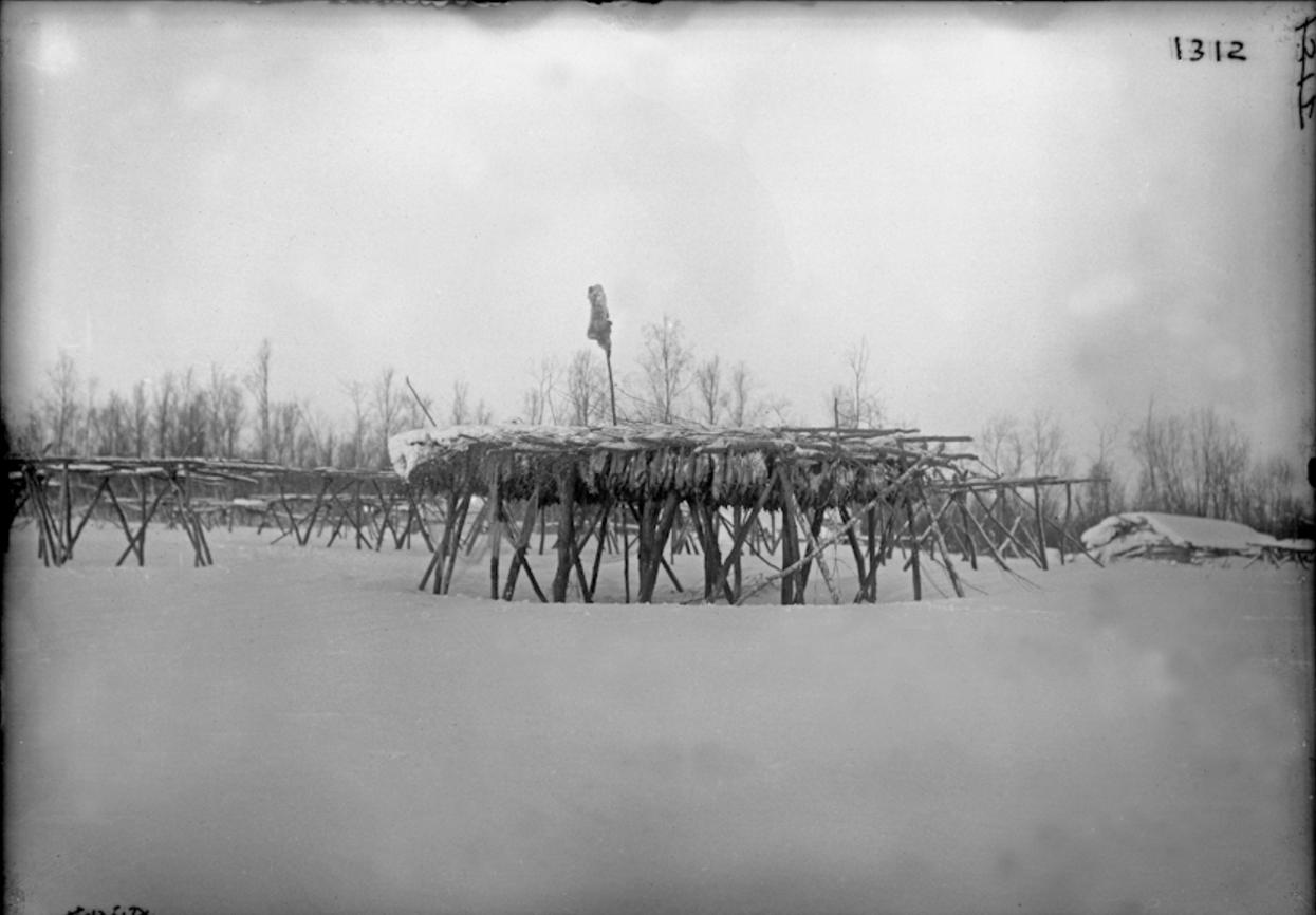 Сушка рыбы, Сибирь, 1901