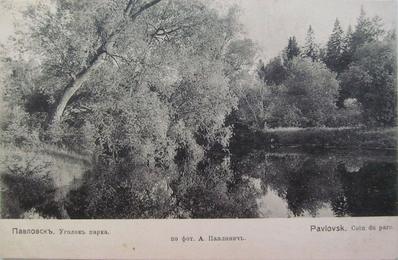Уголок парка
