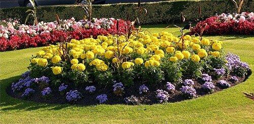 схемы клумб и цветников.  Ландшафтный дизайн.