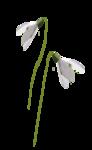 «LilyDesigns_Easter» 0_560f0_9baf03d6_S