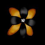 «DBV Gold Rush» 0_58b4b_710f782a_S