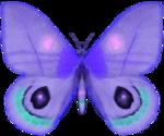 бабочки 0_58f19_cfcc4e32_S