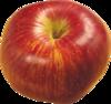 Яблоки 44