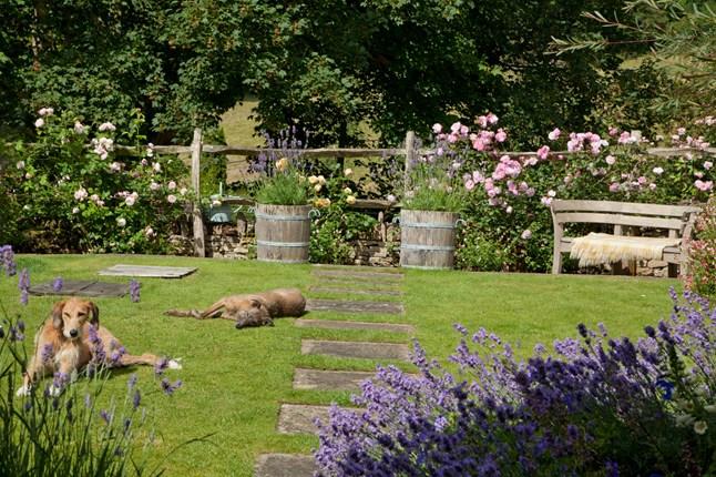 Коттедж в крошечной деревушке в Cotswolds, Англия