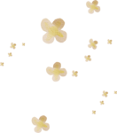 kimla_FMN_flowers (5).png