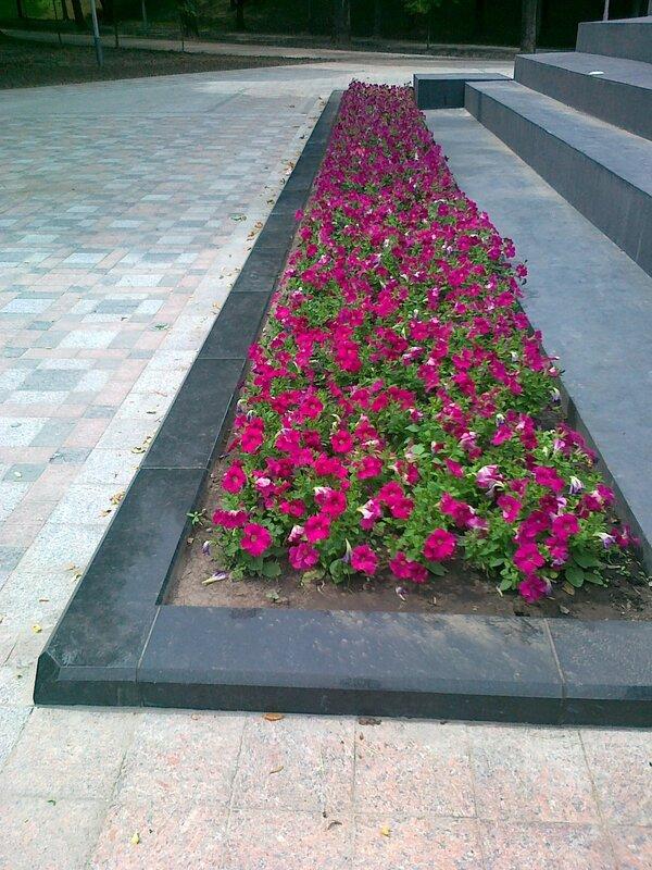 Новый цветник под памятником Владимиру Крестителю