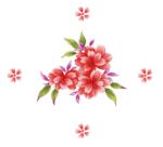 handpainted_flowers_layered_psd_7.png