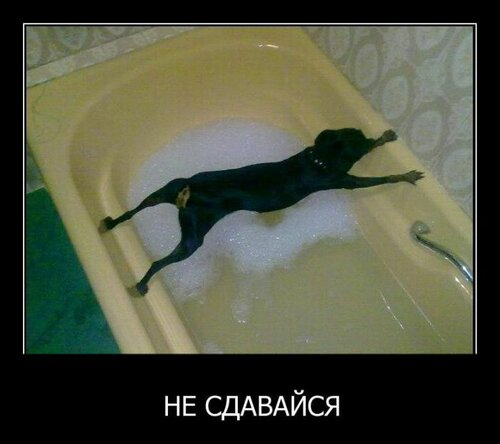 http://img-fotki.yandex.ru/get/5706/78082747.3f/0_a023c_dd9e1e9a_L.jpg