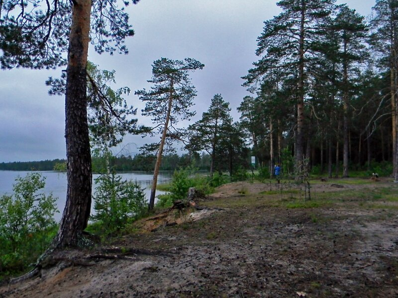 Белая ночь над озером