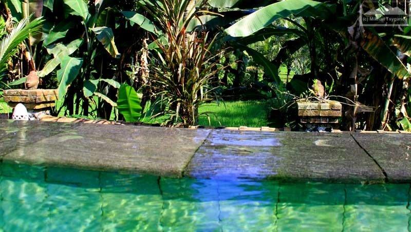 Бассейн в Пури Таман Сари