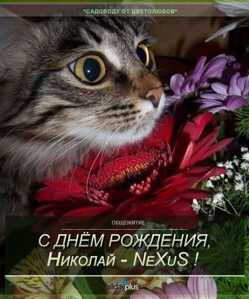С Днём рожденья, NeXuS-Ник !