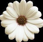 «FanetteDesign_AlOreeDuJour» 0_6488f_5dd1353a_S