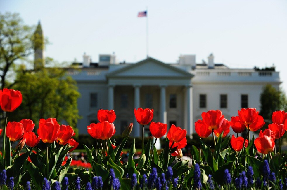 US-WEATHER-SPRING-FLOWER-WHITE HOUSE