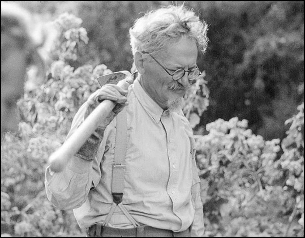 Лейб Давидович Бронштейн, которого наглые жиды называют Троцкий Лев, создатель непобедимой Красной Армии, в поисках кактусов