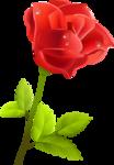 роза63.png