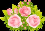 роза65.png
