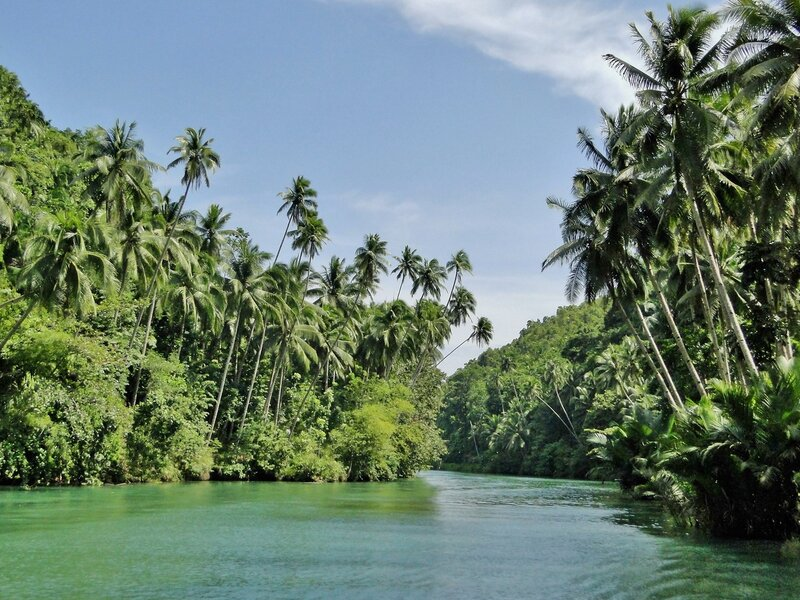 Прогулка по реке Ломбок.