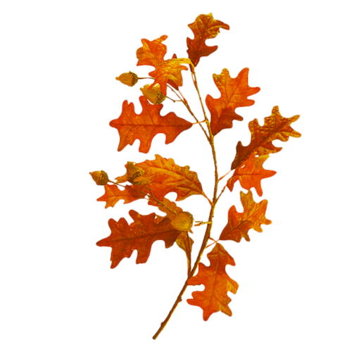 «Enchanted Autumn Time» 0_9a38d_92bdf5a6_L
