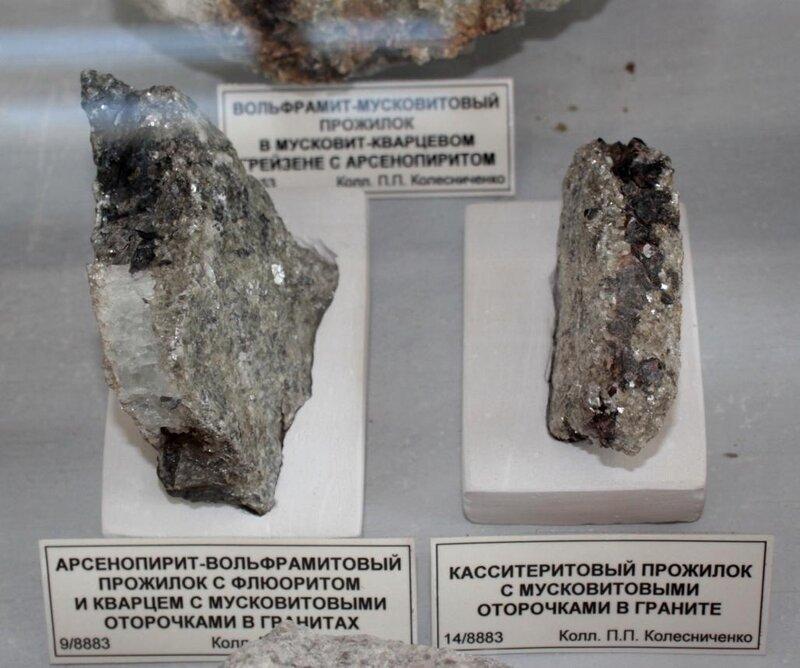 Арсенопирит-вольфрамитовый прожилок с флюоритом и кварцем с мусковитовыми оторочками в гранитах; касситеритовый прожилок с мусковитовыми оторочками и граните