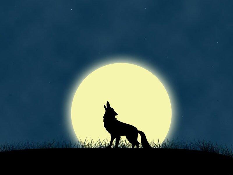 волки анимации