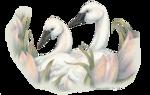 Птицы  разные  0_65dc4_630e6d48_S