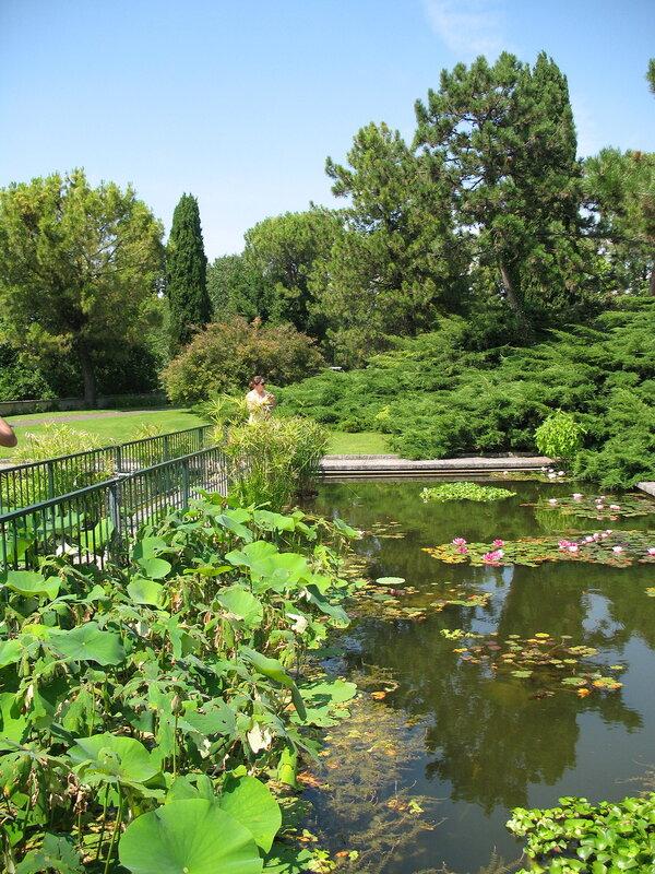 Водные сады Парка Сигурта.