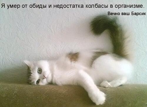 http://img-fotki.yandex.ru/get/5708/124059564.0/0_667d6_575c7b6_L.jpg