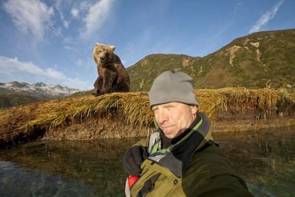 Селфи с дикими медведями барибалами запрещены в Америке