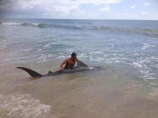 Австралиец поймал акулу голыми руками 0 e169b 1919368e orig