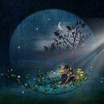 «черничные ночи» 0_6a5c0_f0f1091c_S