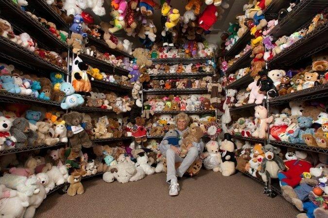 Самая крупная коллекция плюшевых мишек принадлежит Джеки Майли (Jackie Miley), которая установила мировой рекорд в декабре 2012 года благодаря 8 026 плюшевым мишкам. У неё есть плюшевые мишки из каждого штата США и из 24 других стран.