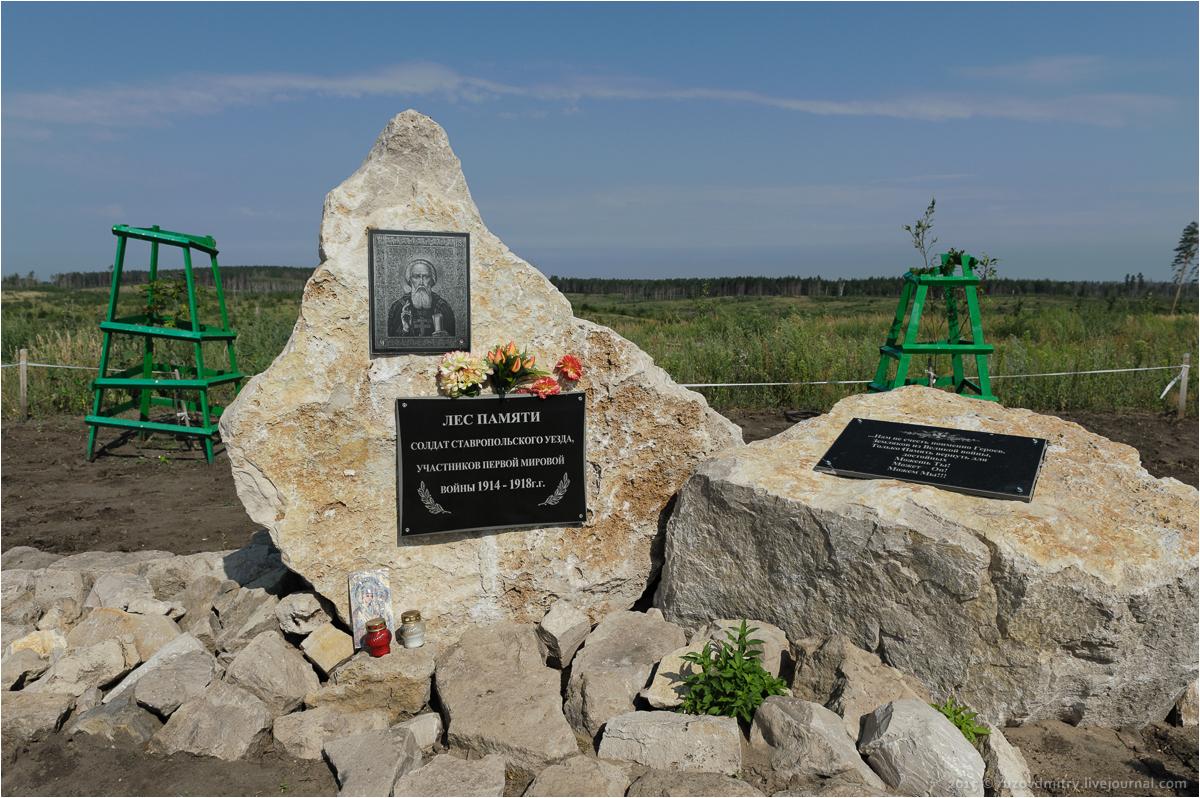 Лес памяти Тольятти