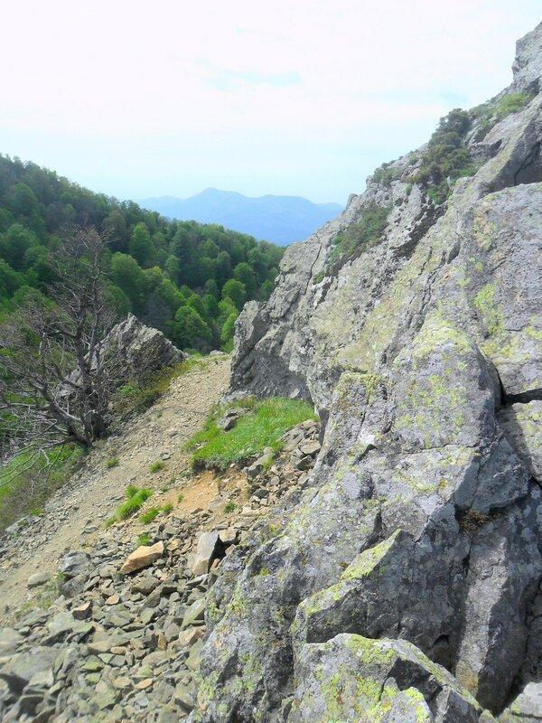 У тропы горной ... SAM_6756.JPG