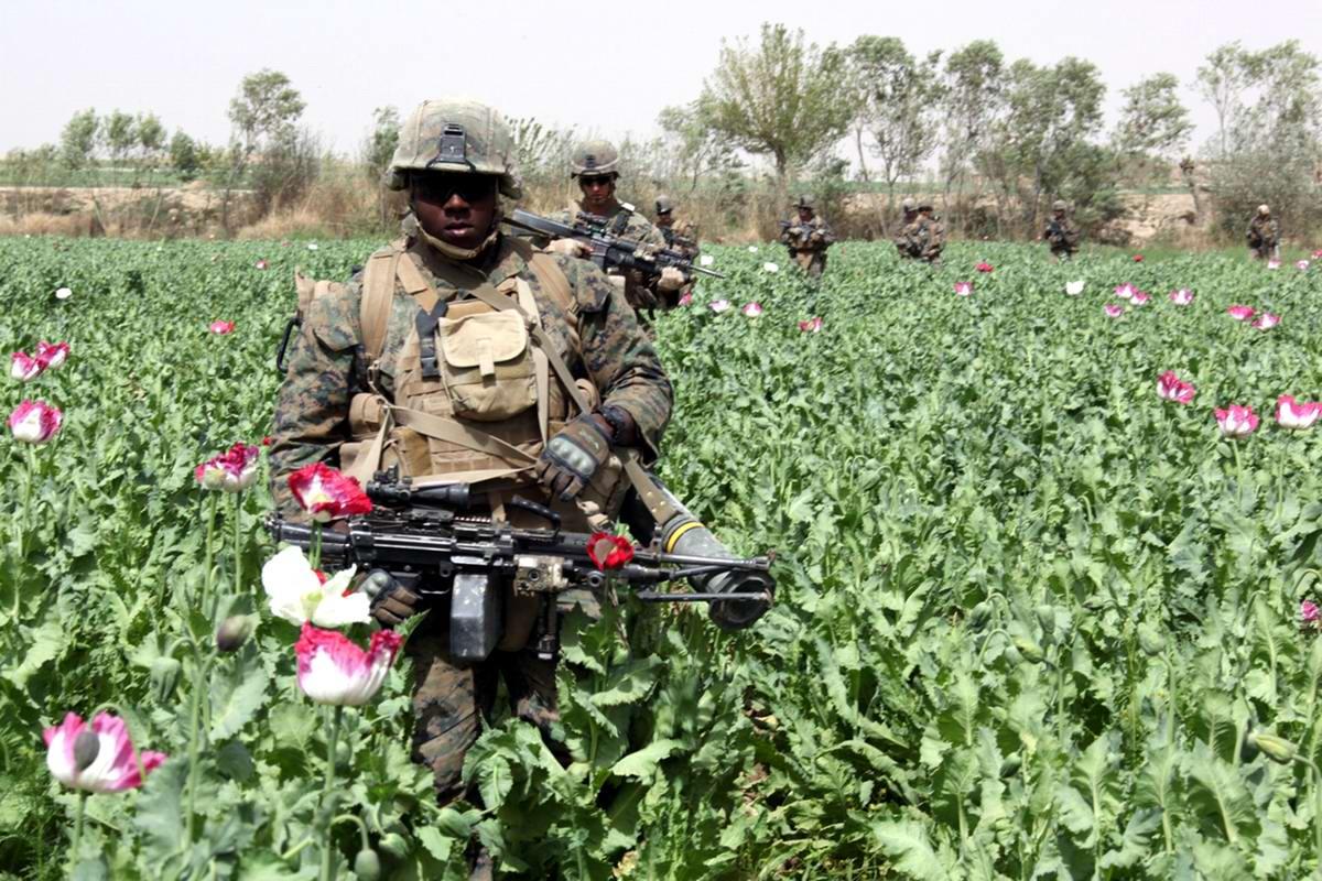 Посреди маковых полей Афганистана - фотографии военнослужащих корпуса морской пехоты США (22)