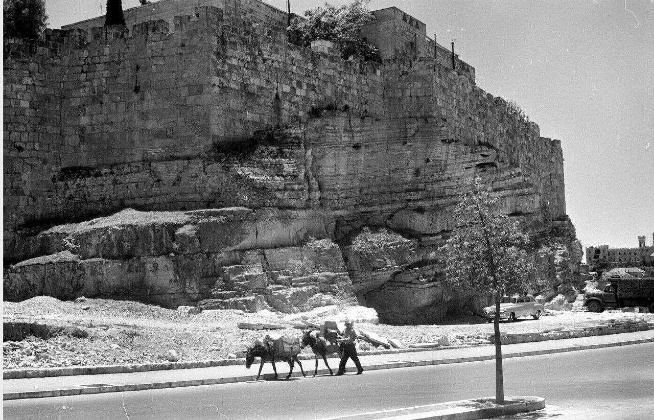 Мужчина с ослами проходит мимо городских стен