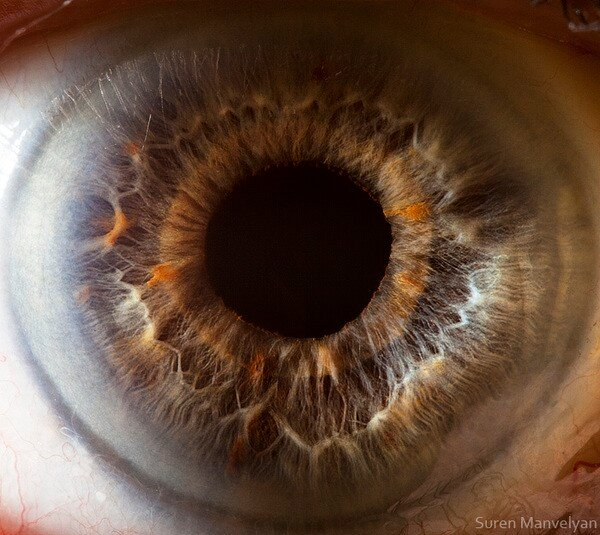 Глубокий макро-взгляд в зеркало души. Сурен Манвелян.