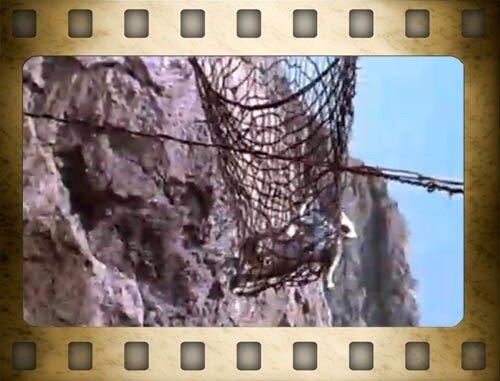 Фильм Человек-амфибия