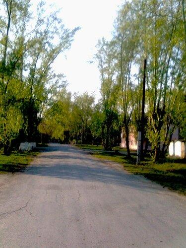 В нашей деревне скоро лето