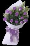 «Violet_Surprise» 0_64096_e82363d2_S