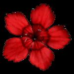 «садовый фэн-шуй» 0_65d50_2eb8ff57_S
