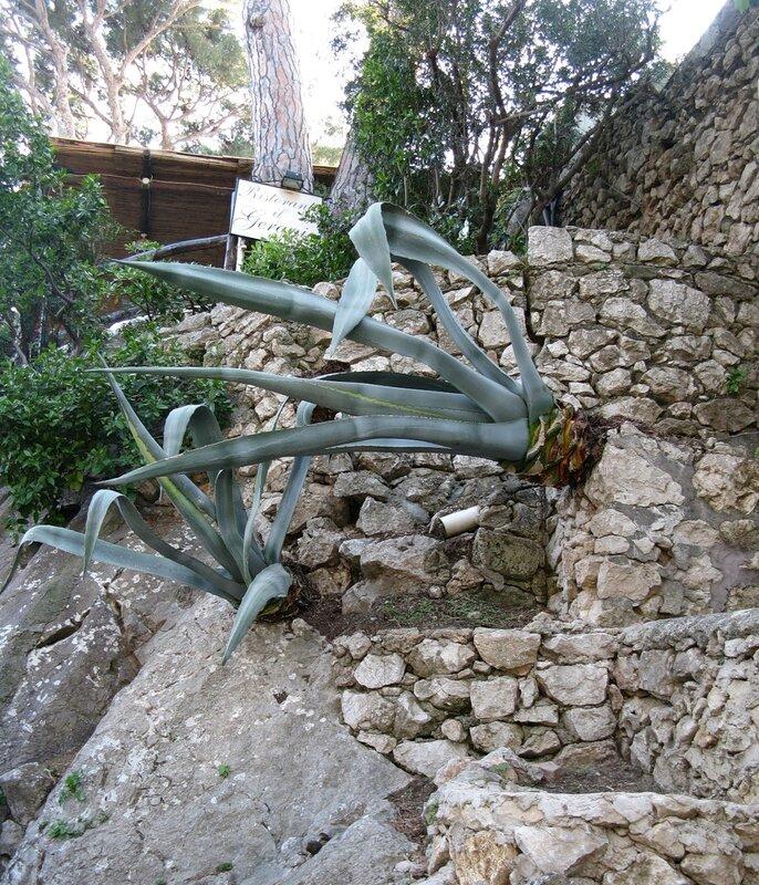 Капри. Сады Августа (Gardini di Augusto)