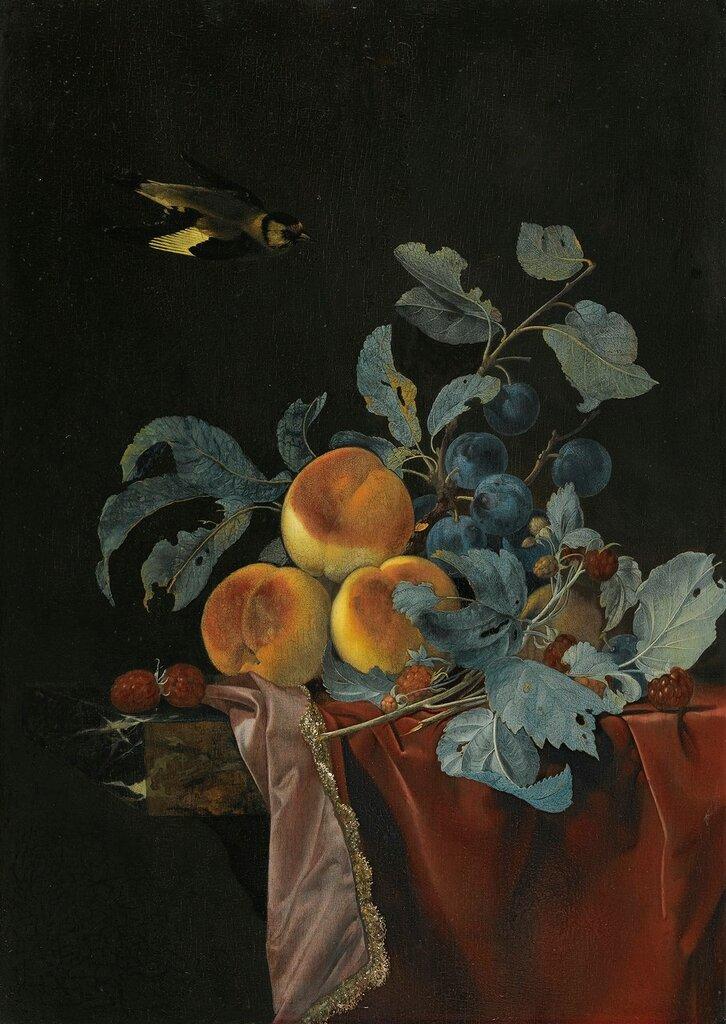 Натюрморт с фруктами и птицей.jpg