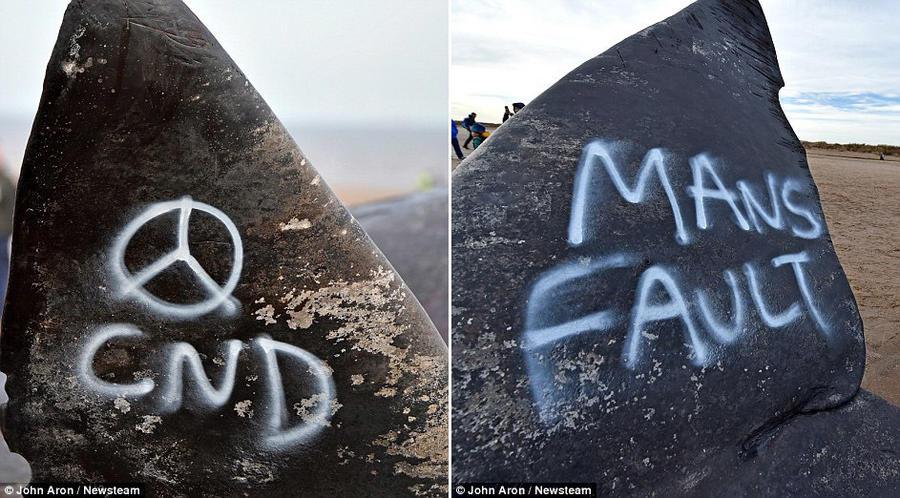 5. За ночь на тушах кашалотов в Скгнессе появились символ кампании за ядерное разоружение (слева) и