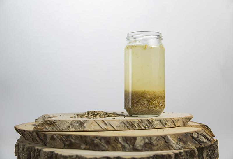 Rejuvelac-bottle-anastasiya-zhitenskaya