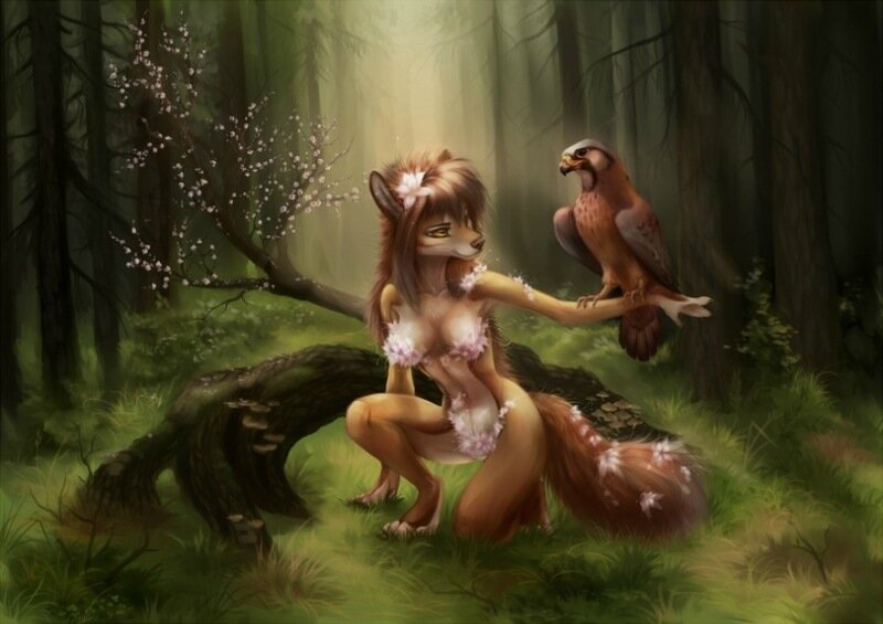 furry-фэндомы-furry-art-Akineza-2023460.jpeg