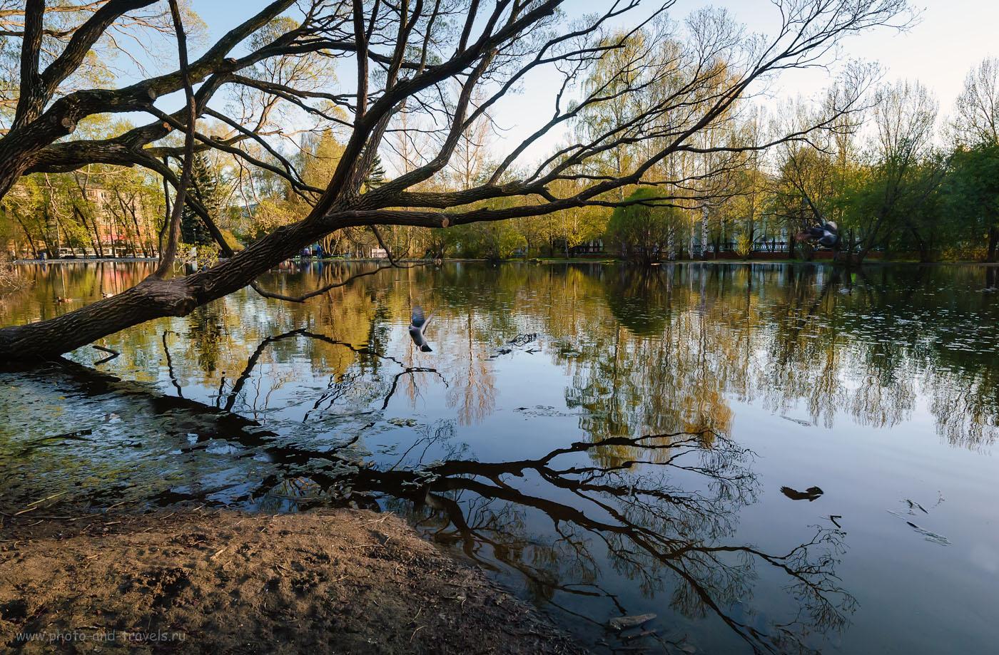 Фотография 19. Весенний парк в Екатеринбурге. Образец фото, снятого на старенький Nikon D200 и объектив Samyang 14/2.8. 1/200, -1.0, 8.0, 320, 14.