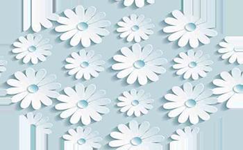 Белые-цветы-на-голубом.png