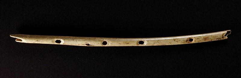 Этой флейте около 40 000 лет. Она сделана из кости грифа и была найдена в южной части Германии. Неко