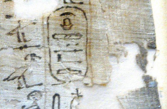 Причиной одной из самых больших войн Египта стала любовь фараона Секененра Тао II к гиппопотамам. Он